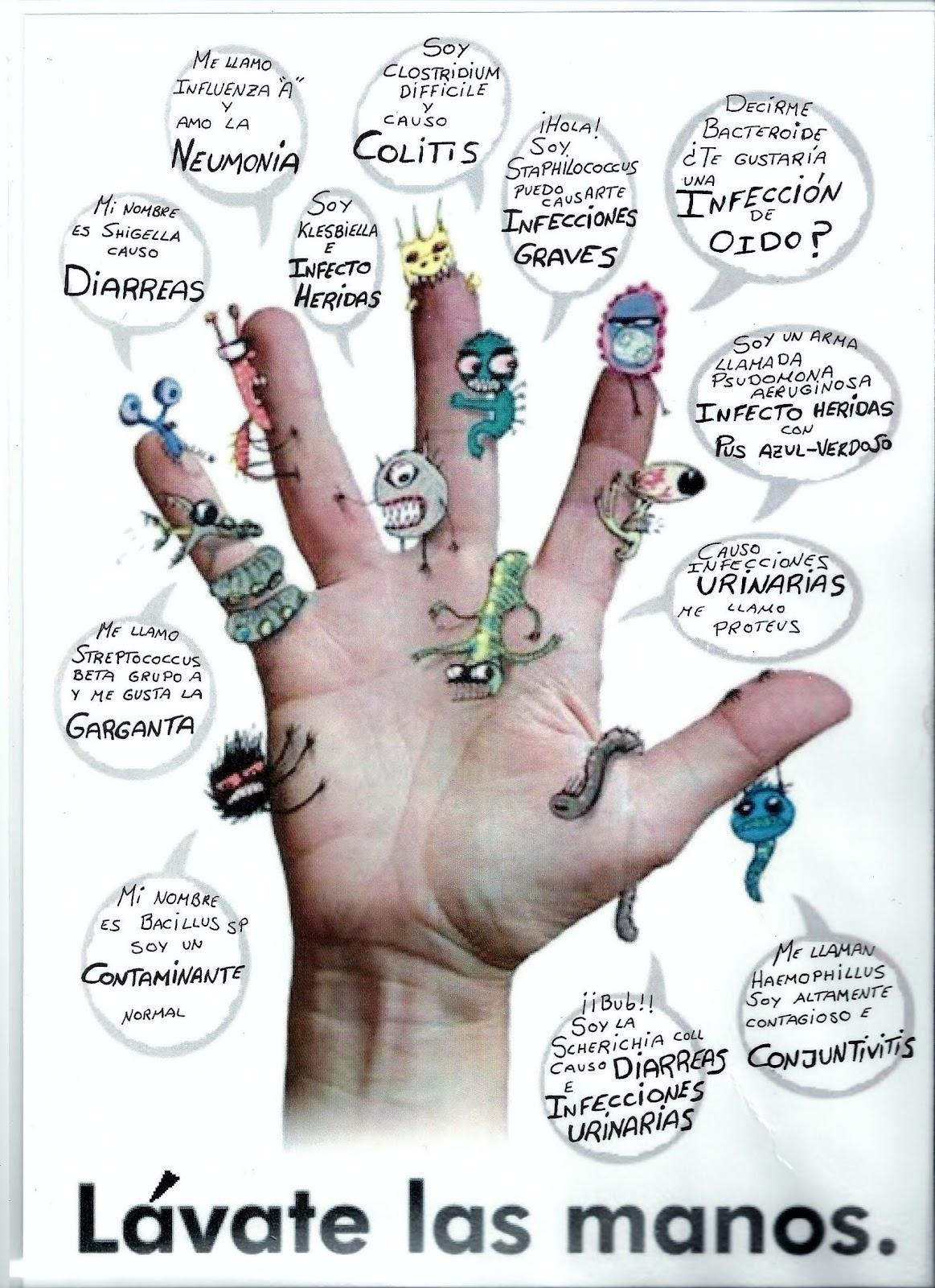Lavarse las manos clave para evitar infecciones carne for Inodoro significado